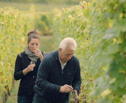 Getting to know: Winemasters & the families defining France's greatest wine regions … in the name of education!
