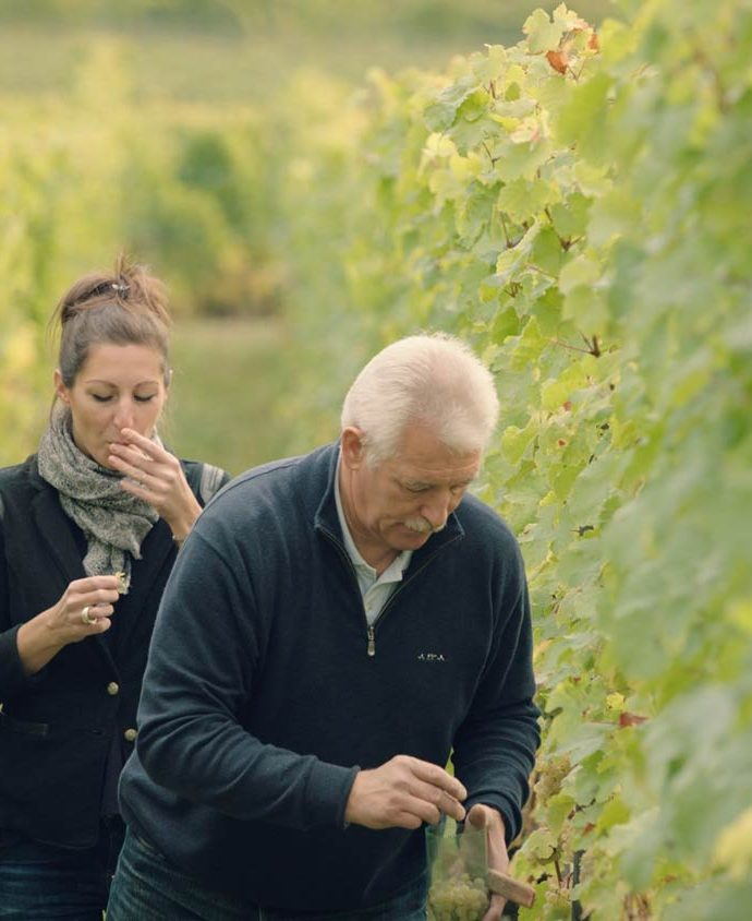 Getting to know: the families defining France's greatest wine regions … in the name of education!
