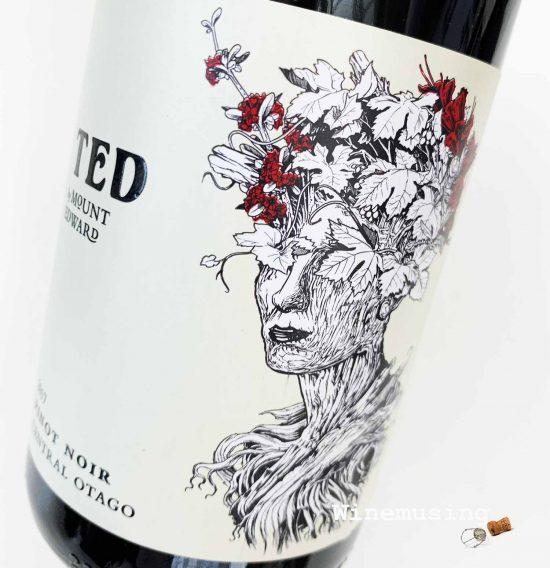 Mount Edward TED