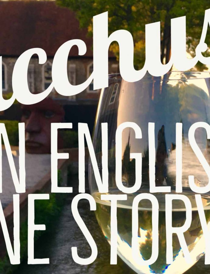 And the Bacchus English wine story continues ….