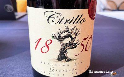 Cirillo 1850 Ancestor Vine Grenache
